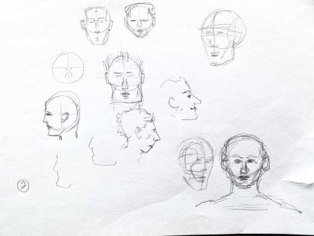 Learning to draw proportions of the face